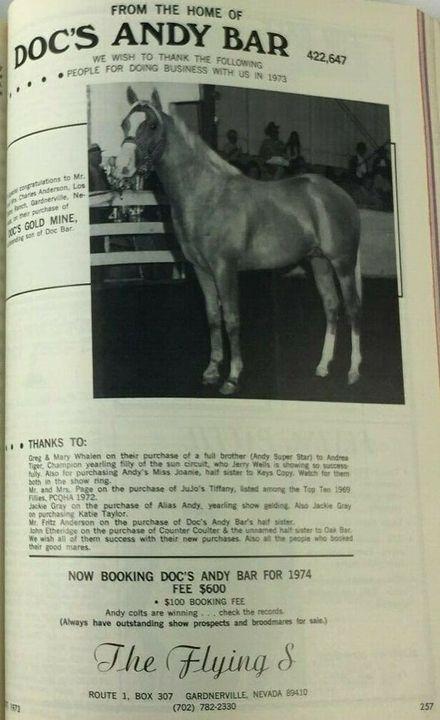 DOCS GOLD MINE  pal. H, QUARTER HORSE, 1969DOC BAR x MISS SAUCY#0697898NRHA EARNER / AQHA ROM Performance & HalterSIRE O...
