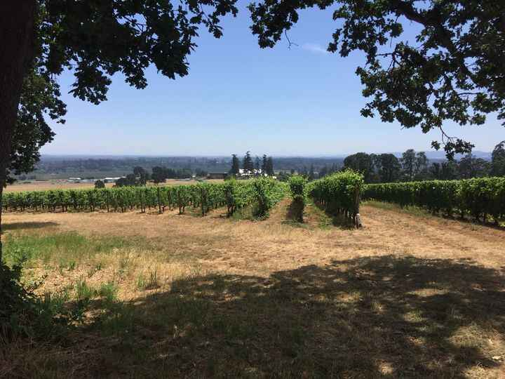 This week we at RFTC spent a couple of days from filming at Stoller Winery.  Just a gorgeous location for filming.