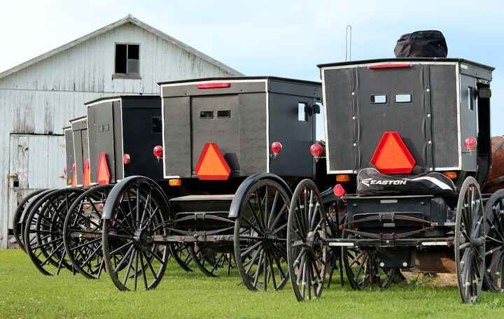 Benjamin Wideman shot this photo of a row of Amish buggies lined up in the countryside where people were gathering for a...