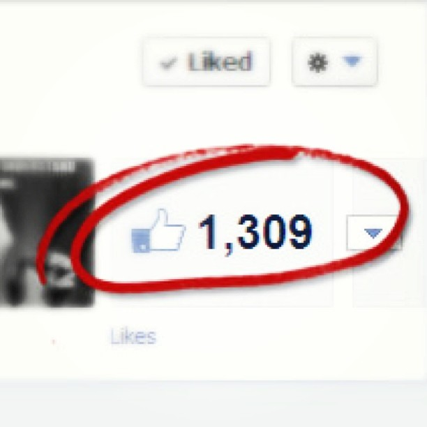 Numbers #matter and matter a lot. Get real Facebook #likes and build #big audience. Call 917.722.1246 for details
